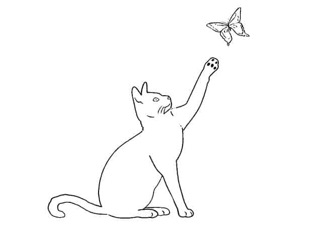 Cat and butterfly drawing