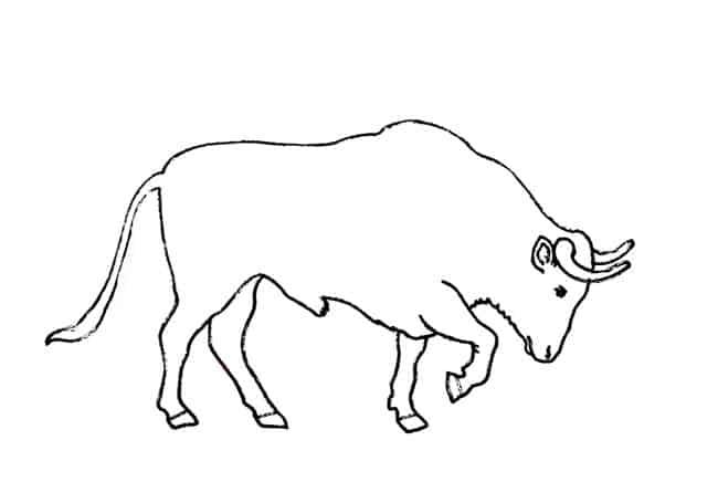 How To Draw A Bull Charging Step By Step Easy Animals 2 Draw