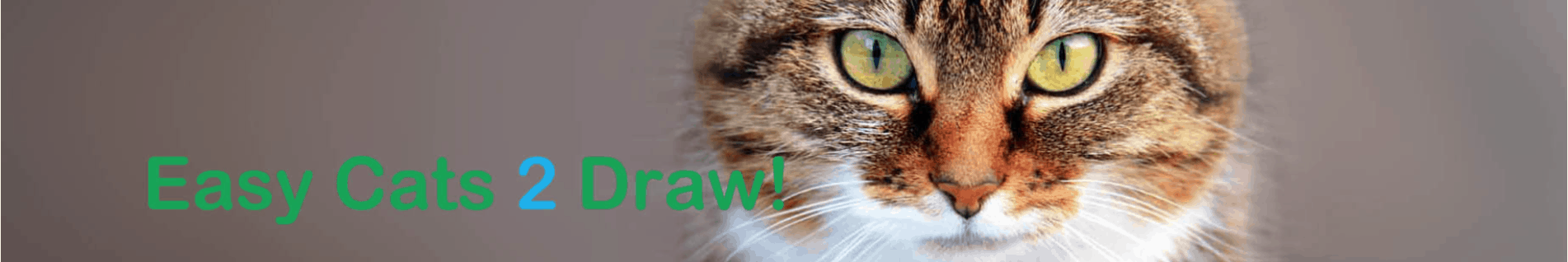 How to draw cats easy step by step