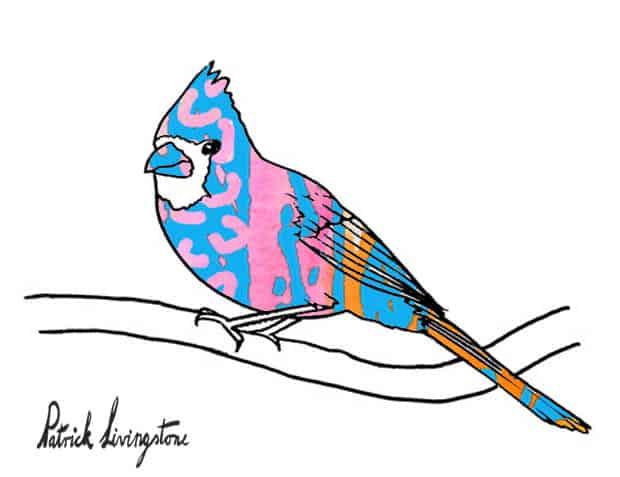 Cardinal bird watercolor drawing blue pink