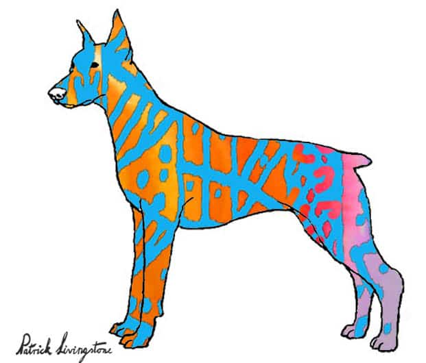 Doberman watercolor drawing blue orange by Patrick livingstone