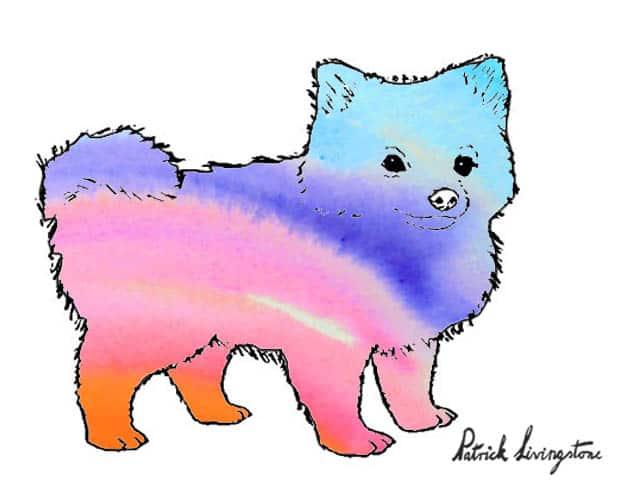 Pomeranian watercolor drawing purple