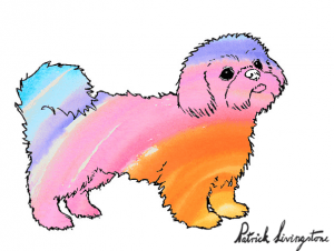 Shih Tsu dog drawing in color