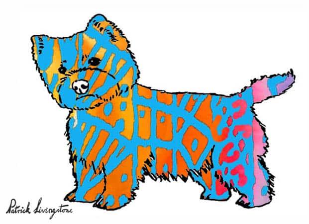 Westie watercolor drawing blue orange by Patrick livingstone