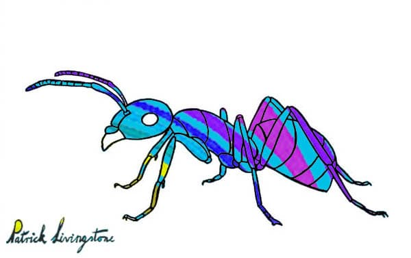 Ant drawing colored blue stripes