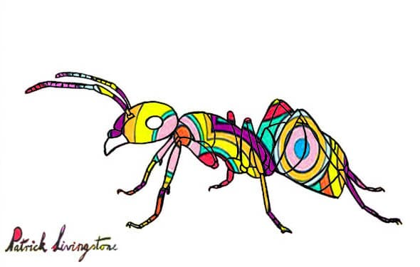 Ant drawing colored circles