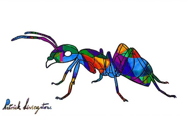 Ant drawing colored dark glass