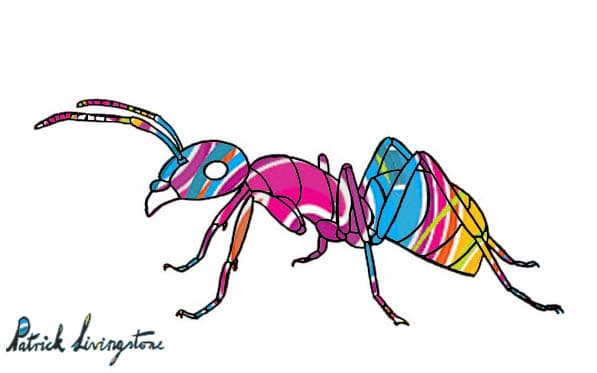 Ant drawing colored deep pink