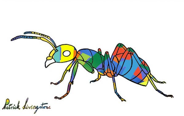 Ant drawing colored modern