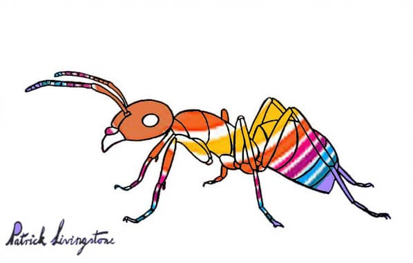 Ant drawing colored orange stripes