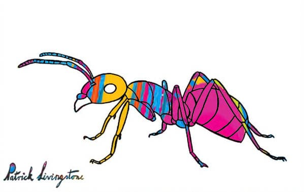 Ant drawing colored pink ab