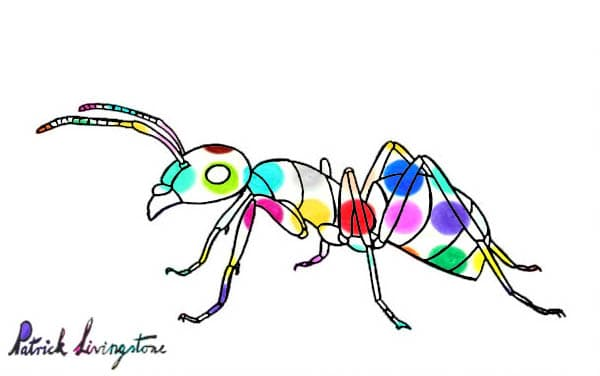 Ant drawing colored spots