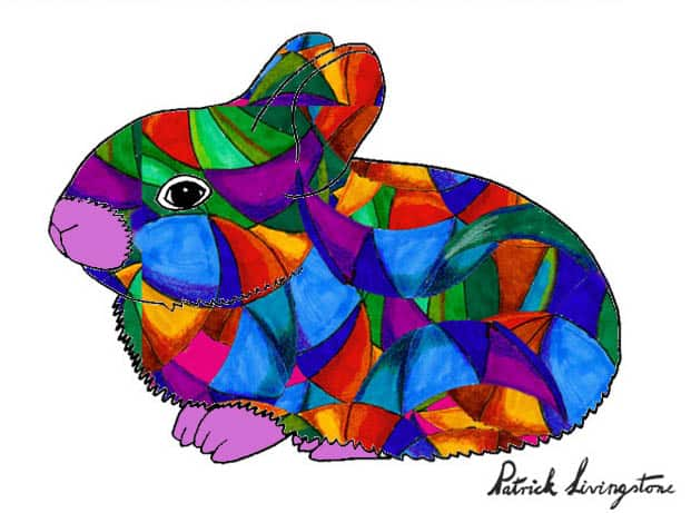 Baby Rabbit drawing colored d