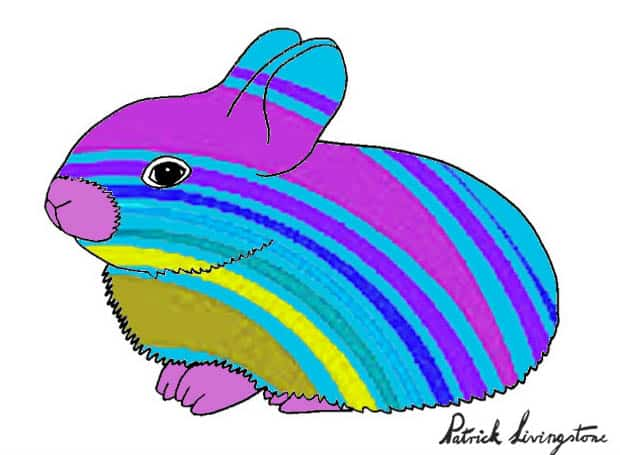 Baby Rabbit drawing colored l