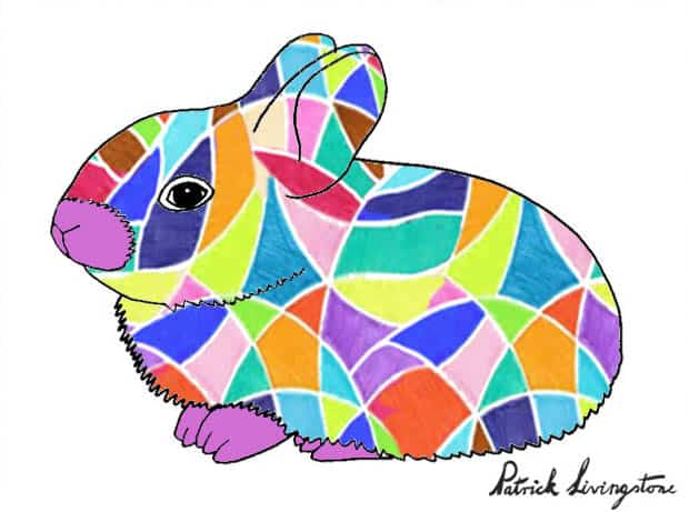 Baby Rabbit drawing colored r