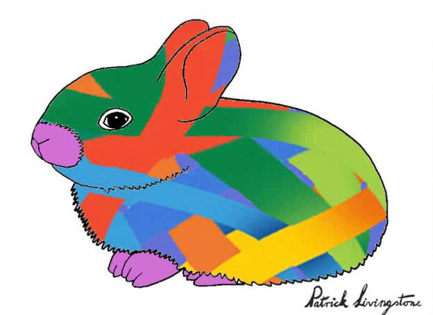 Baby Rabbit drawing colored t