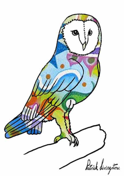How To Draw A Barn Owl Step By Step – Easy Animals 2 Draw