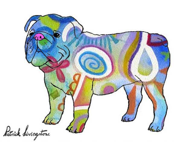 Bulldog drawing colored 10