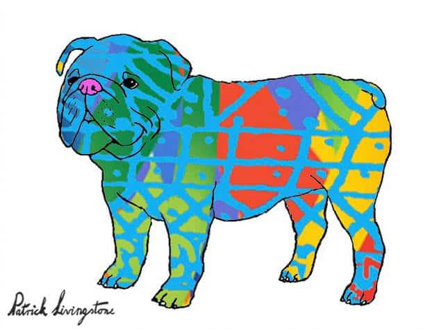 Bulldog drawing colored 2