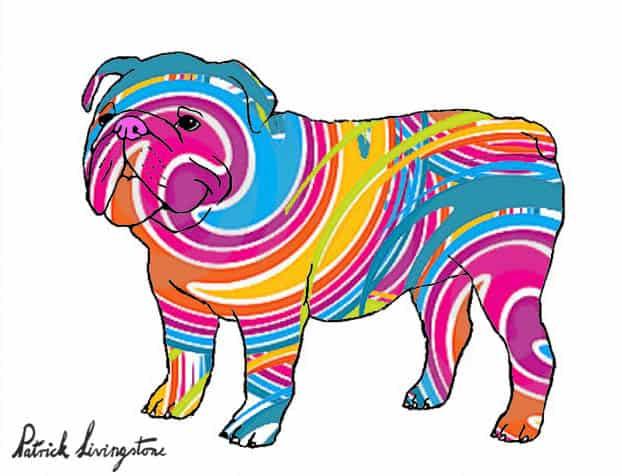 Bulldog drawing colored 3