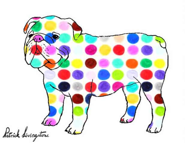 Bulldog drawing colored 4
