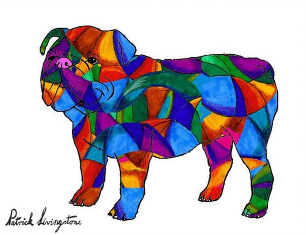 Bulldog drawing colored 5