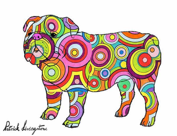 Bulldog drawing colored 6