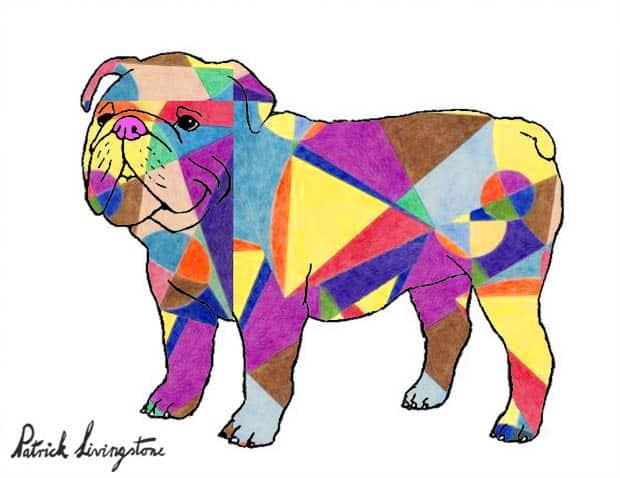 Bulldog drawing colored 9