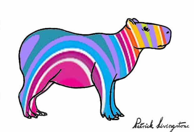 Capybara drawing colored i
