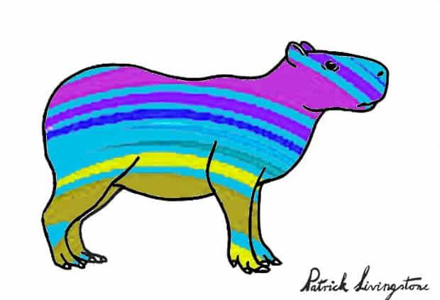 Capybara drawing colored n