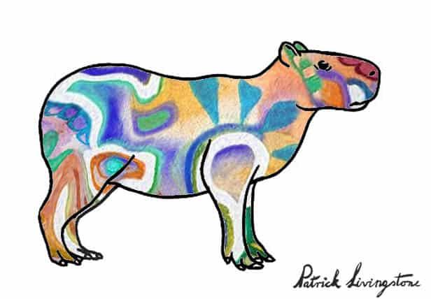 Capybara drawing colored r
