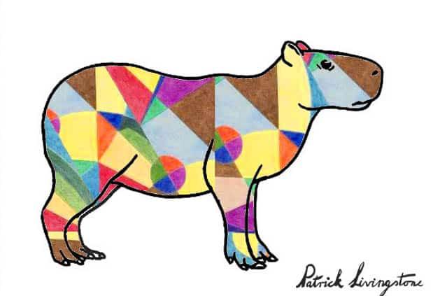 Capybara drawing colored u