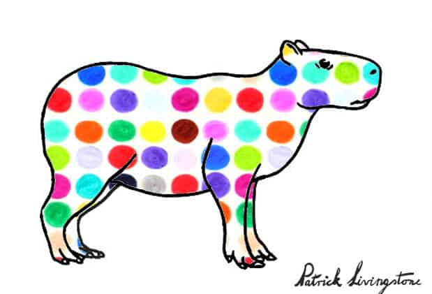 Capybara drawing colored w