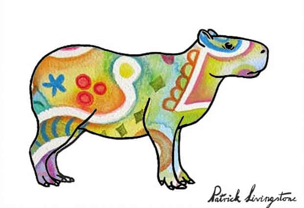 Capybara drawing colored y
