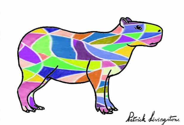 Capybara drawing colored z