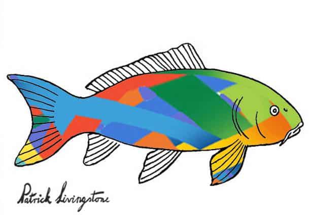 Carp drawing colored modern