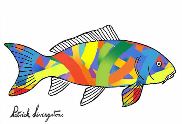 Carp drawing colored taped