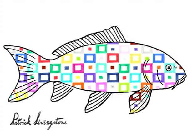 Carp drawing colored