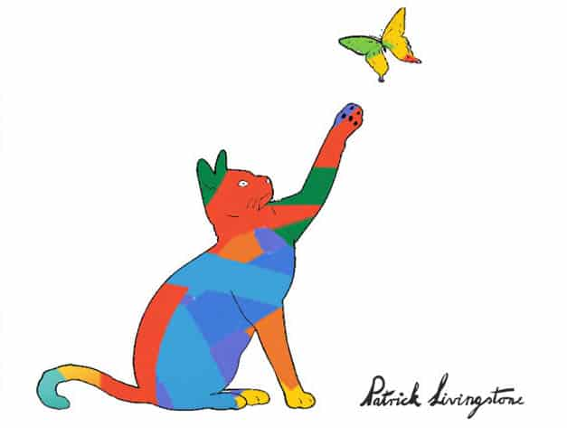 Cat and Butterfly drawing colored e