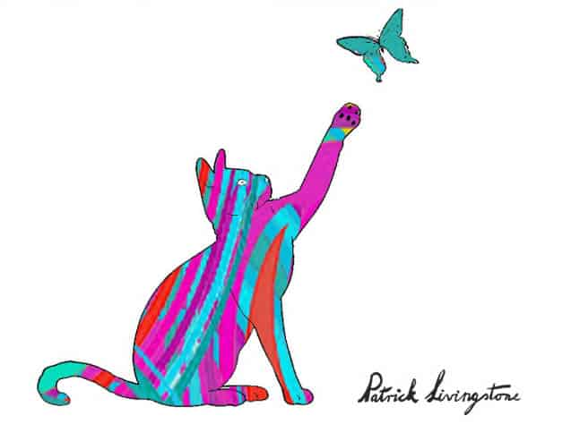 Cat and Butterfly drawing colored f