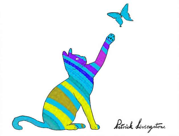 Cat and Butterfly drawing colored k
