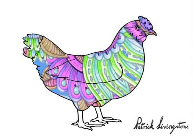 Chicken drawing colored a