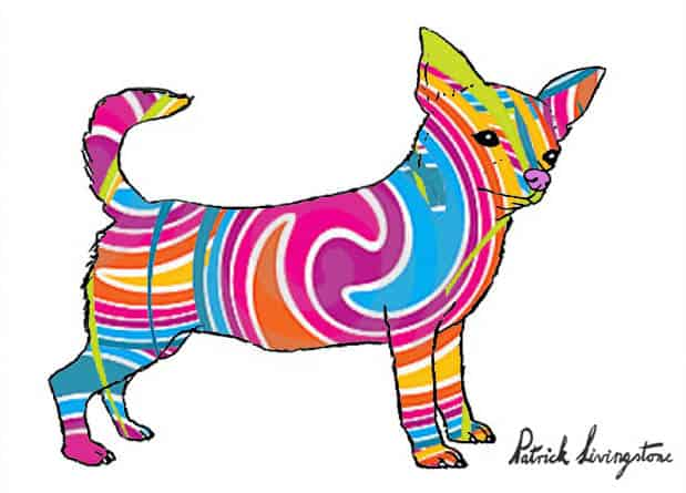 Chihuahua drawing colored b