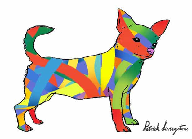 Chihuahua drawing colored f