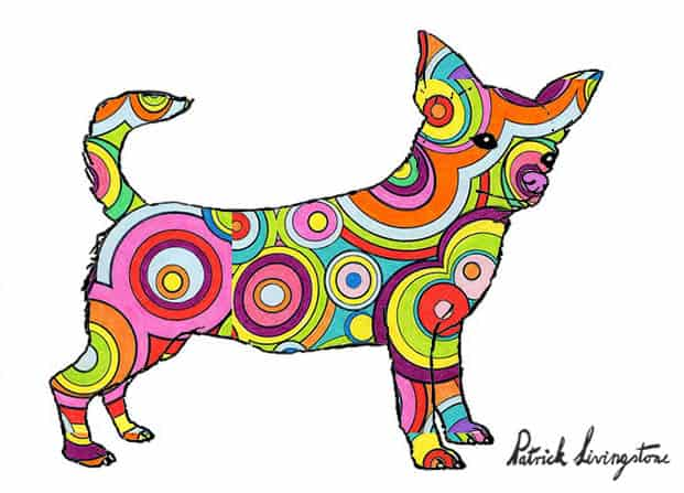 Chihuahua drawing colored j