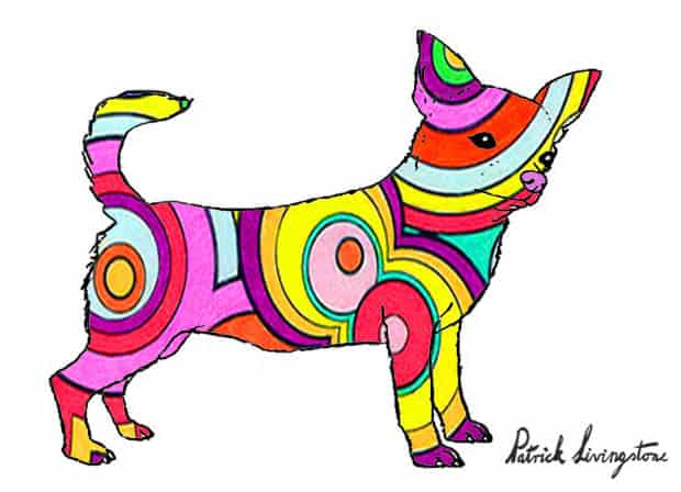 Chihuahua drawing colored rt