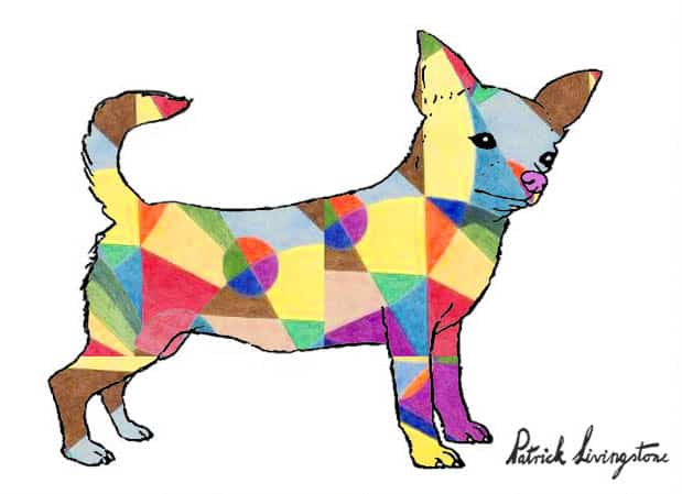 Chihuahua drawing colored s