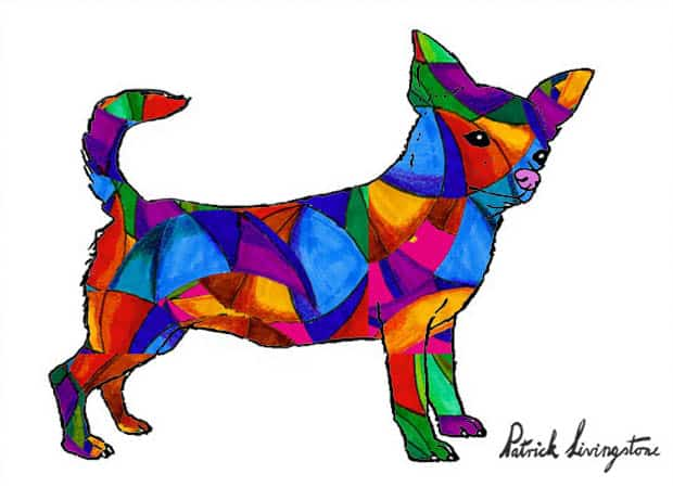 Chihuahua drawing colored x