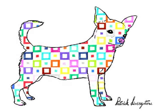 Chihuahua drawing colored