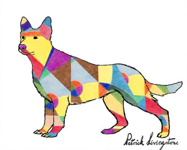 German Shepherd dog drawing colored d